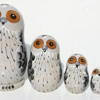 Polar owls